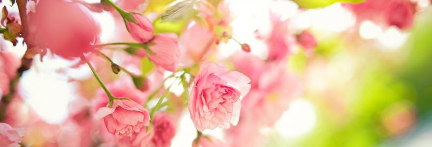 des artisans fleuristes